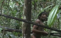 Imagen extraída de una grabación inédita que recoge un encuentro casual de agentes gubernamentales con la tribu. © FUNAI