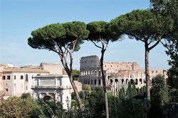 Обзорная экскурсия в Риме - что можно посмотреть, Колизей