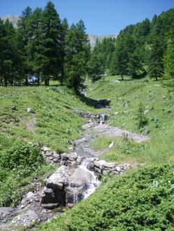Sentier vers le Mont Guillaume