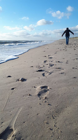 Ina sammelt Treibholz am Nordseestrand in Dänemark