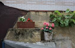 8 Blumentöpfe als Dekoration/Flowerpot