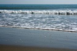 73 Wellen/Waves