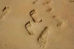 46 Fußabdrücke/Footprints