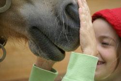 Mit und von Tieren lernen
