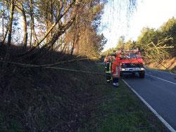 Einsatz Feuerwehr Soderstorf