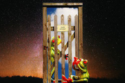 Frosch vor verschlossener Tür