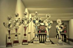 Am 29.03.2016 beginnt das traditionelle Volkssportkegelturnier/ Bild: Michael Wagner