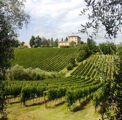 дегустации вин кьянти классико