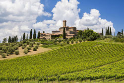брунелло ди монтальчино дегустации вин