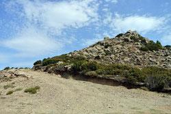 Auffahrt zum Monte Pisaneddu