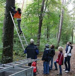 In Jugendgruppen aktiv sein - hier beim Nistkasten-Aufhängen