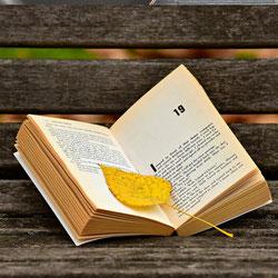 Nieuwe boeken roman