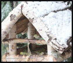 Vogelfutterhaus Erlenzeisige