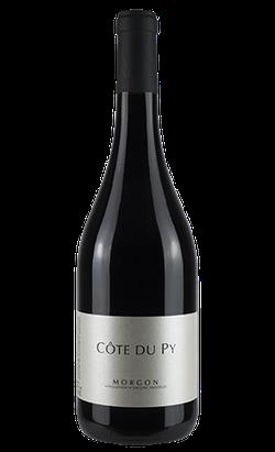 vin morgon côte du py dominique jambon lantignié