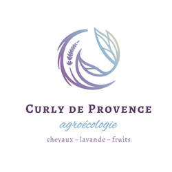 Cliquer sur l'image pour accéder au site des Curlys de Provence