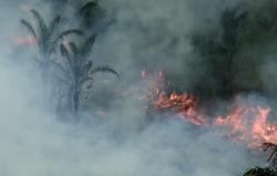Incendios amenazan las vidas y las tierras de pueblos indígenas en la Amazonia. Survival International