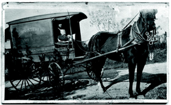 "John ""Butch"" Stehlin driving the first ""meat wagon"" 1913."