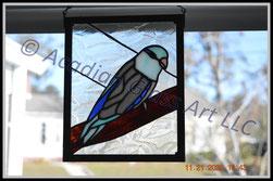 Parrotlet Panel