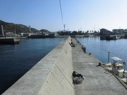 アジ・アジングの釣り場 周南市