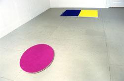 Matthieu van Riel. Bloemenveld pigment 65x90x2cm en Zonder titel pigment en metaal 90x140x2cm 2005