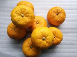 四国厳選の柚子を使用したゆず味