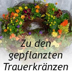 Bild: gepflanzte Trauerkränze