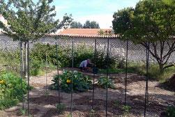 Patrick dans son jardin