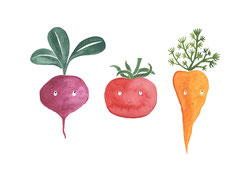 Postkartenset - Junges Gemüse 4 €