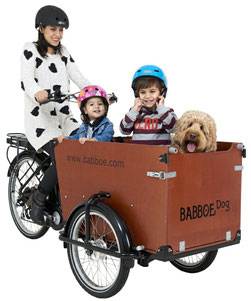 Babboe Dog-E Qwic Lasten e-Bike, Lastenfahrrad mit Elektromotor, e-Cargobike 2020
