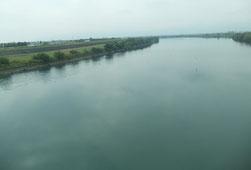 こちらは長良川