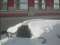 ベンチも雪の中
