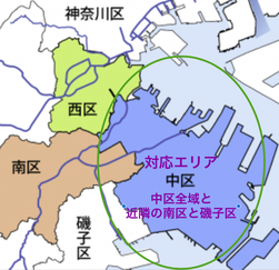 横浜、中区、 南区、キャットシッター、ペットシッター