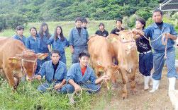 八重農の牧場に導入された牛と畜産科の生徒たち=10日午後、名蔵