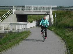Radweg am Bensersieler Tief