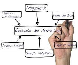 Proceso Judicial de División de la Cosa Común - Proindiviso
