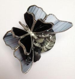 Papillon sur fossile