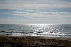 28 Reflexionen im Wasser/Reflections in the water