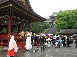 Cérémonie de mariage au grand sanctuaire Tsurugaoka-Hachimangu (Kamakura)