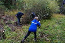 Foto: NABU Freischneiden der Amphibienteiche im Forst