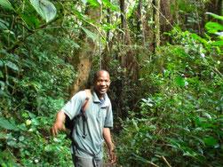 Wanderführer durch den Regenwald in den Usambara Bergen