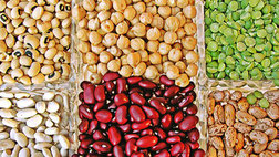 Nachhaltige Hülsenfrüchte - fairani