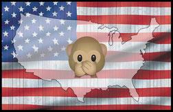 USA Fettnäpfchen
