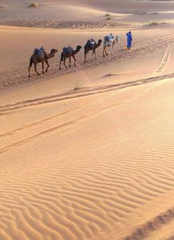 モロッコ・サハラ砂漠/すべてがフォトジェニック♡