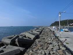 アオリイカの釣り場 下関市・山陰・日本海側