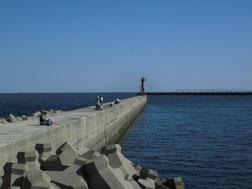 アオリイカの釣り場 北九州市門司区