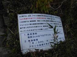 本山岬 潮干狩りの看板の写真