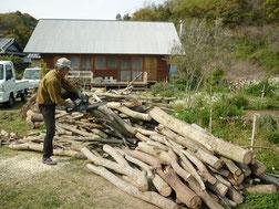 雑木を チェーンソーで伐る
