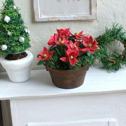 Anleitung für Miniatur-Weihnachtssterne