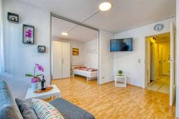 Apartment / Ferienwohnung Adina Bondorf