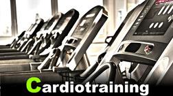 Cardiogeräte von Life Fitness GYM Fürth Fitnessstudio